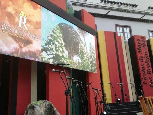 Fiestas de Mayo Los Realejos 2018